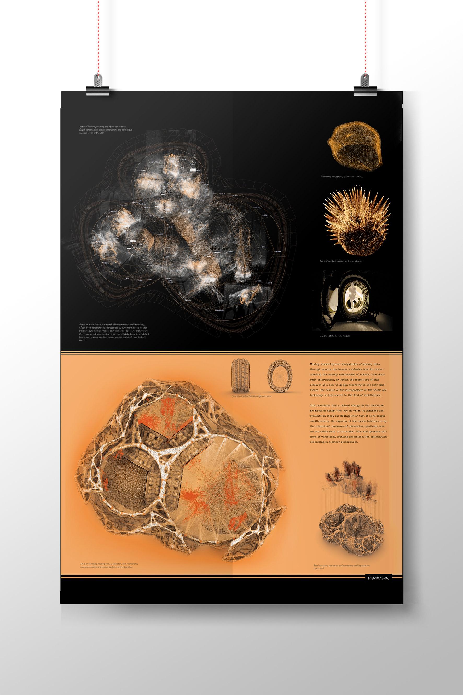 Roberto Vargas - Intersensorium / Graduation Project