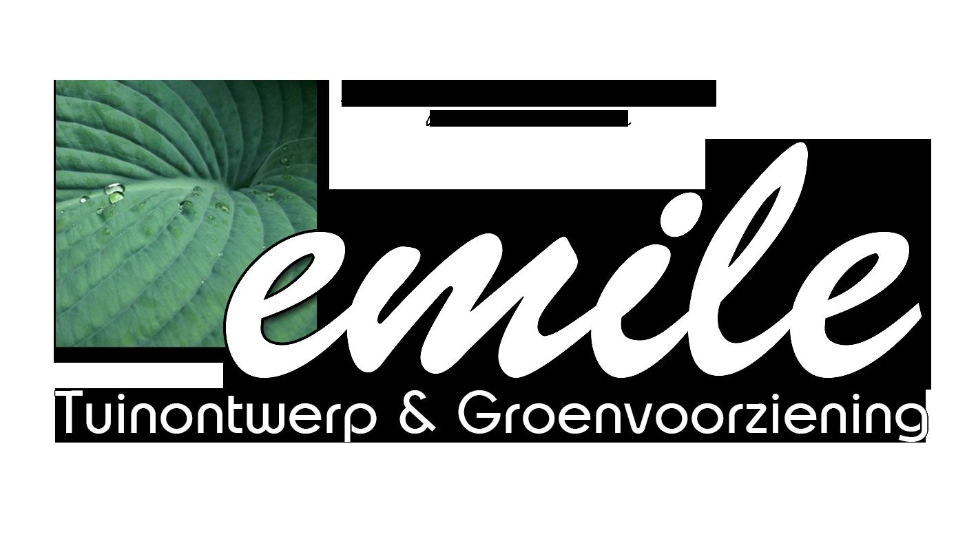 emile wiersum