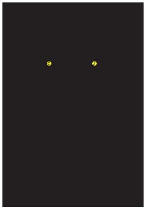Cristian Duran
