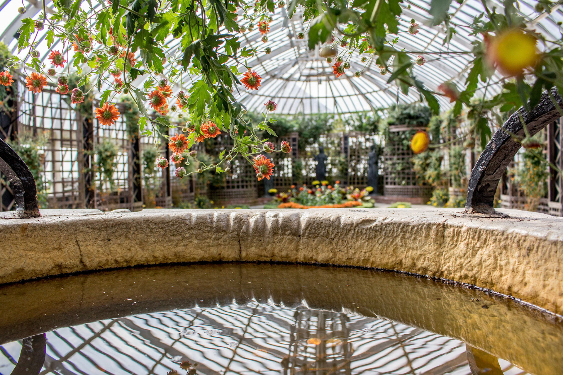 Picture Perfect Weddings - Phipps Conservatory