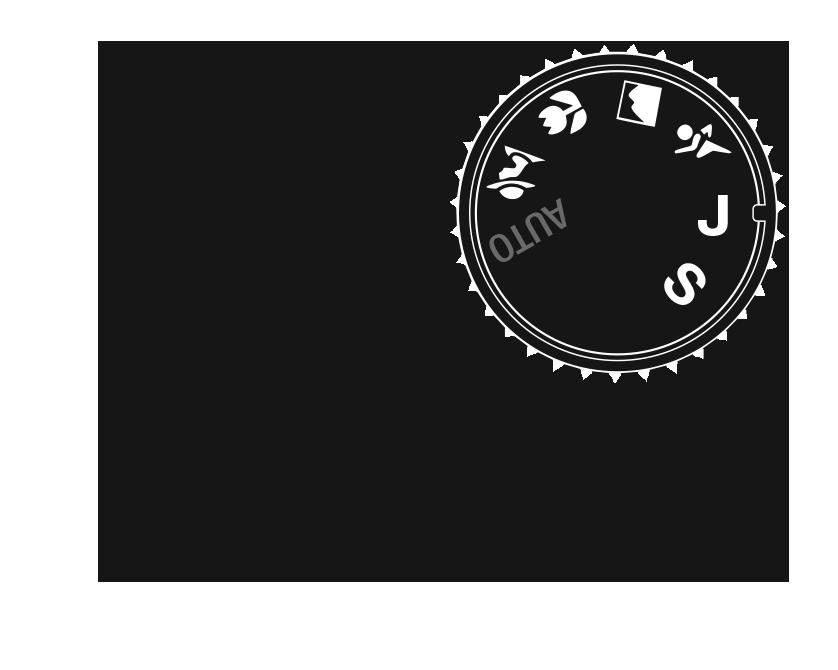 Joseph Sciacchetano