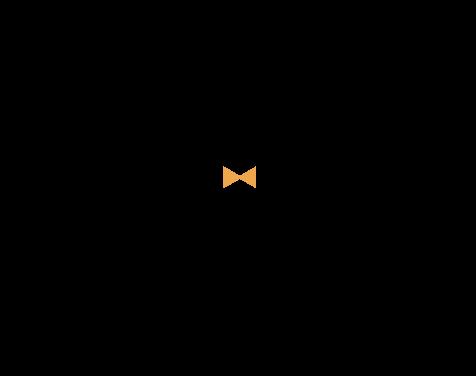 Logo Sir Henrys Fotografie