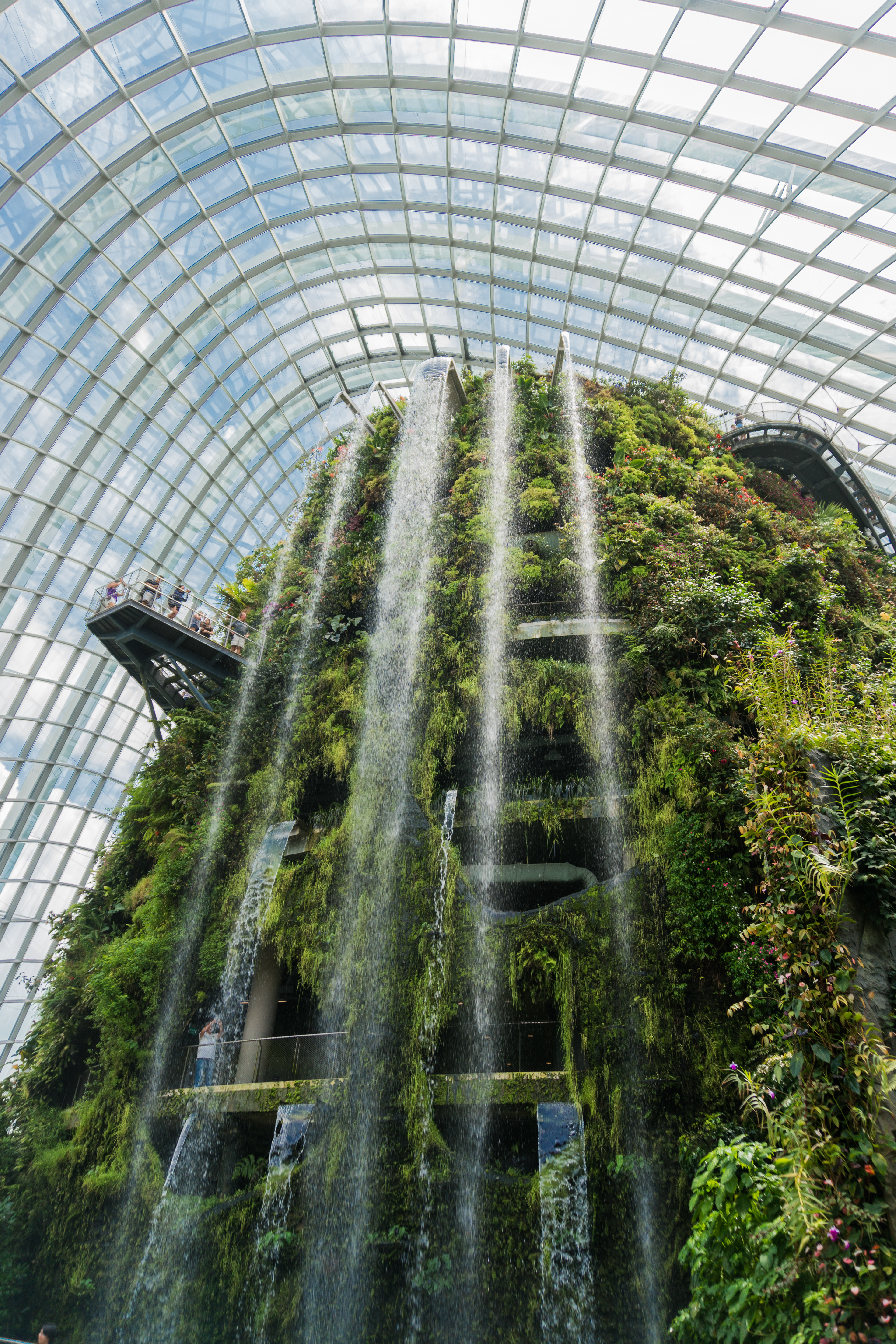 singapore from a garden city to a city in a garden the stated aim is to raise the quality of life by enhancing greenery and flora in the city garden by - Garden By The Bay Eateries