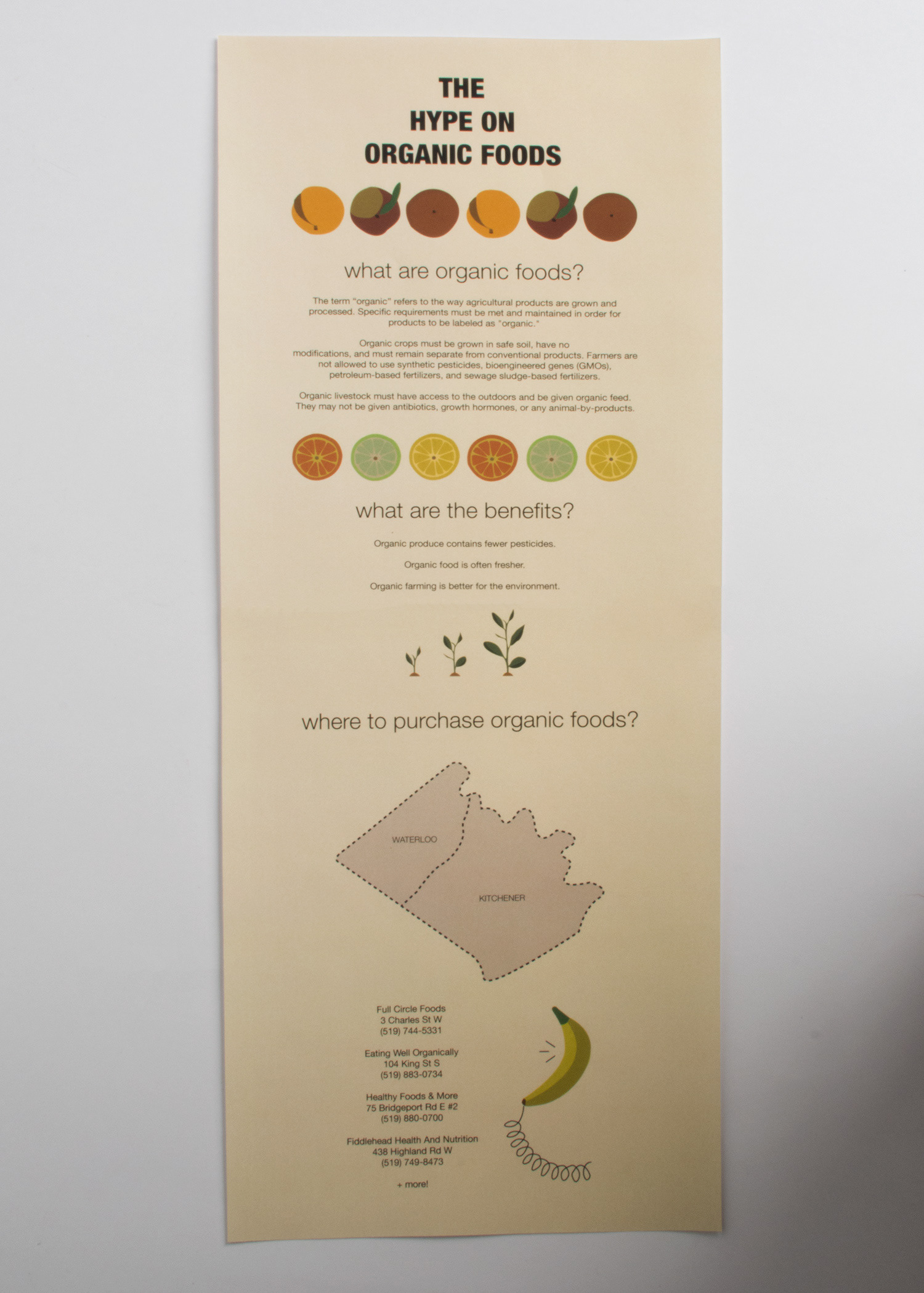Jawaher Kelashipour - Organic Food Infographic