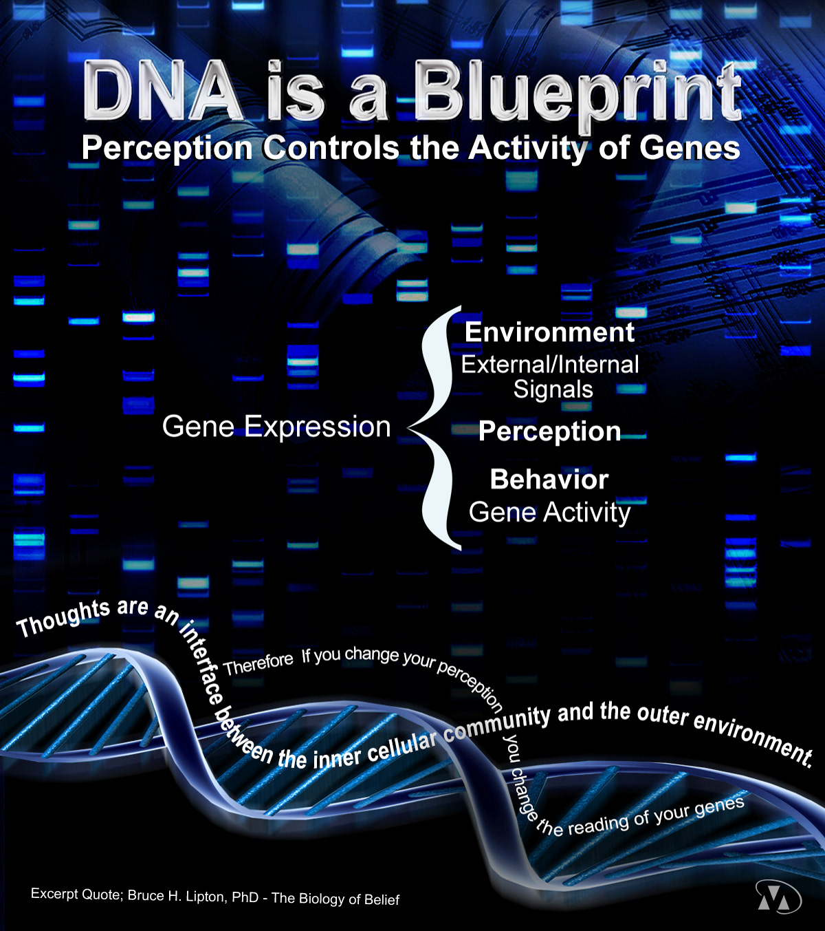 Donna marchand dna posters and business cards for biologist researcher and holistic practitioner malvernweather Image collections