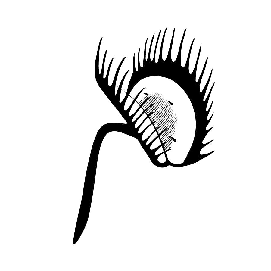 Carla Certeza Symbol And Logotype
