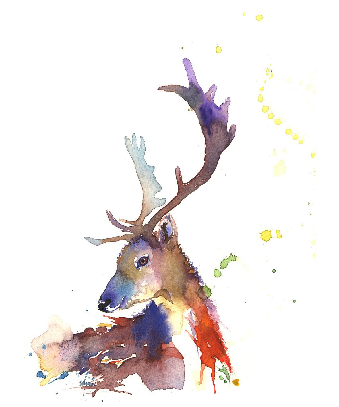 Patra Tawatpol Reindeer