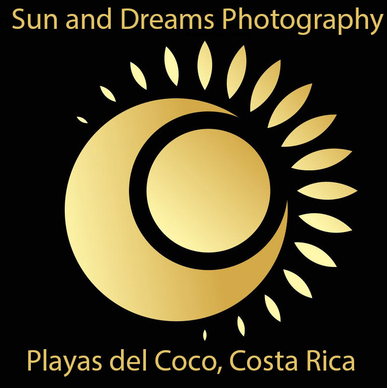 sun and dreams photography