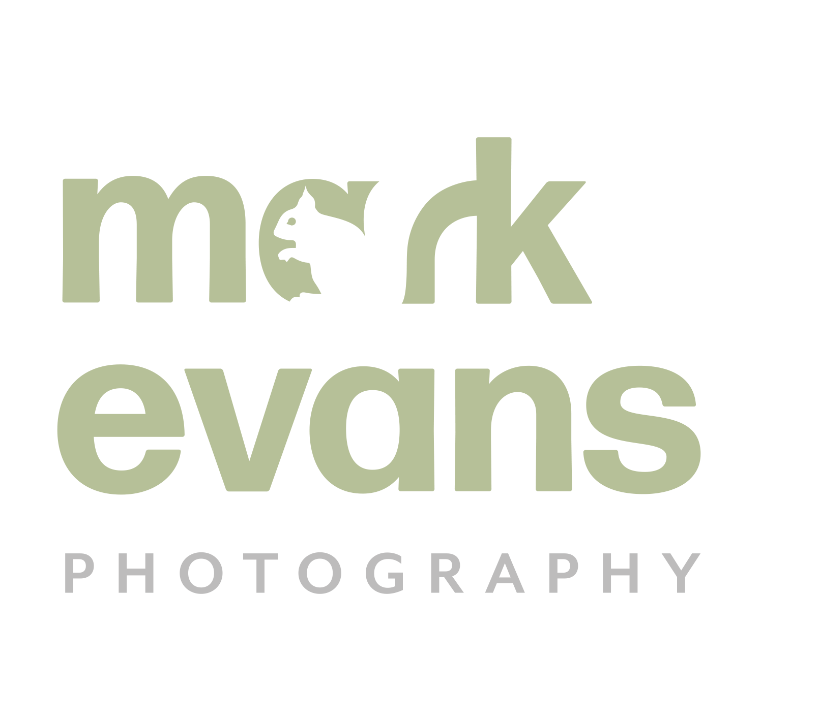 Mark Evans Photography