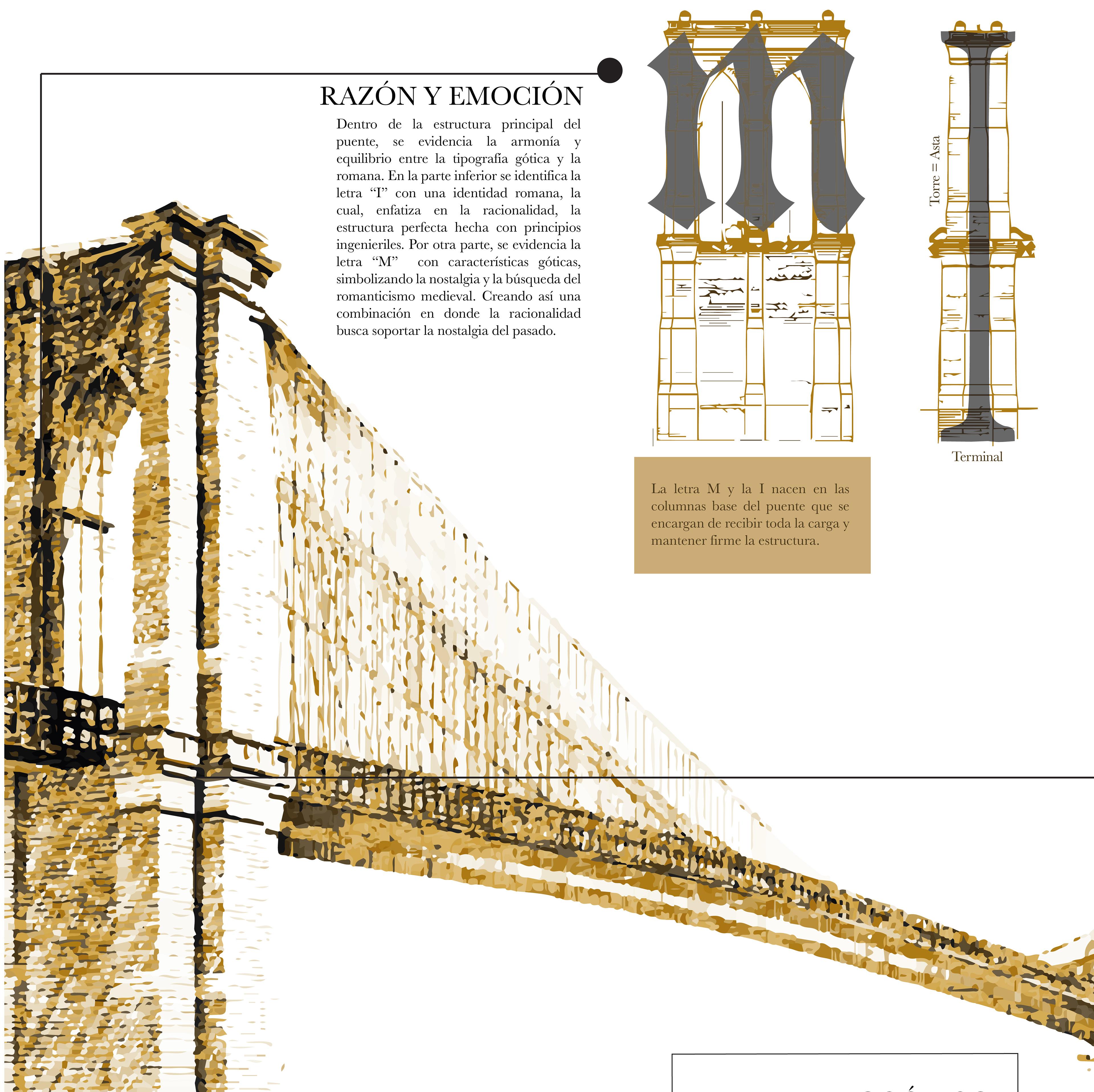 Camila Rangel - Anatomía Brooklyn