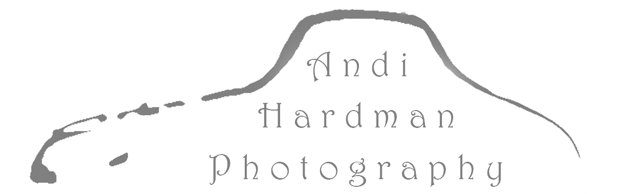 Andi Hardman