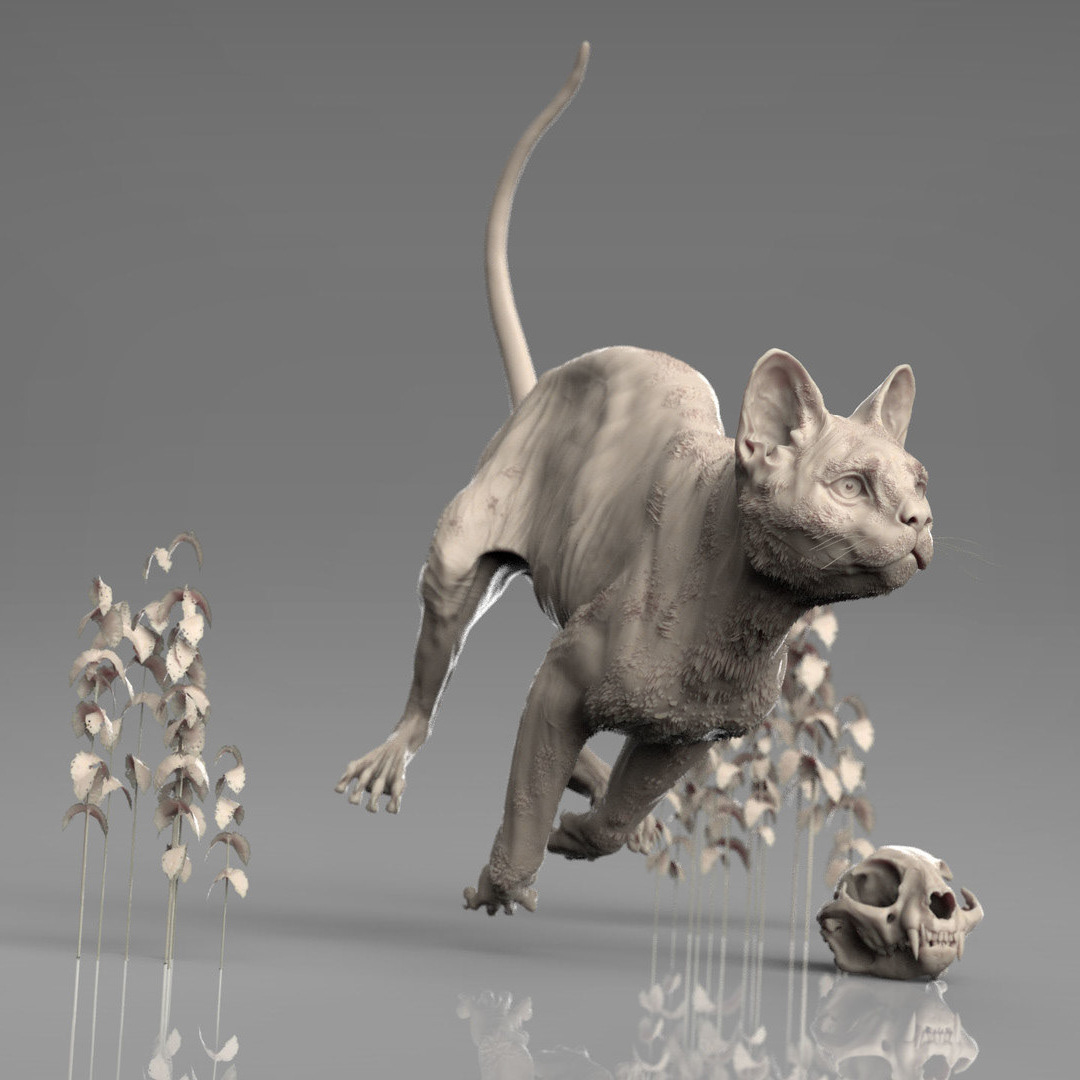 Marcus Trolldenier - CG Artist - Sculpting Anatomy