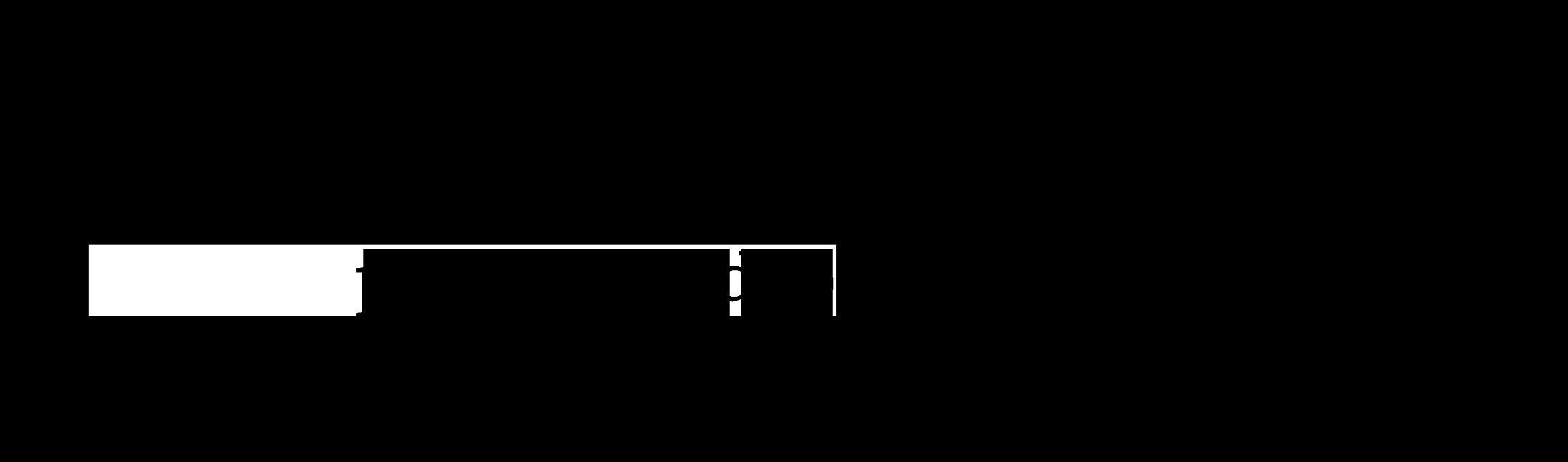 elisa lauricella