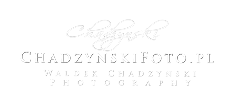 Waldek Chadzynski