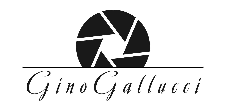 Gino Gallucci