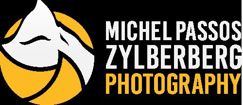 Michel Zylberberg