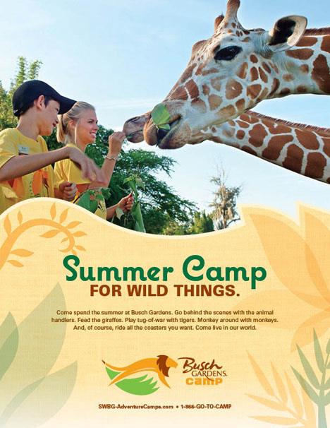 Beryl Cahapay Design And Illustration Busch Gardens Seaworld Camp