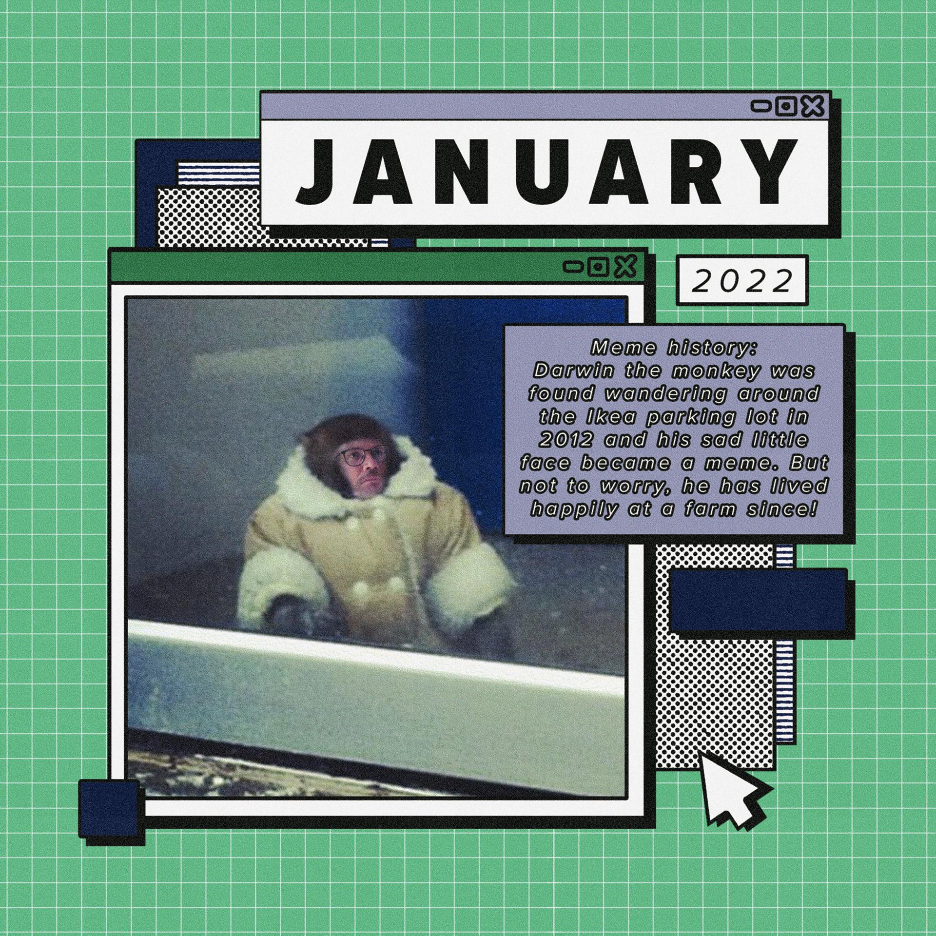2022 Meme Calendar.Megan Toenyes 2021 Project For Awesome Calendar Graphic Designer