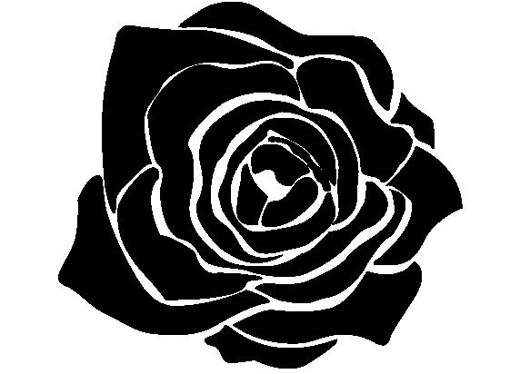BLACK ROSE STUDIO