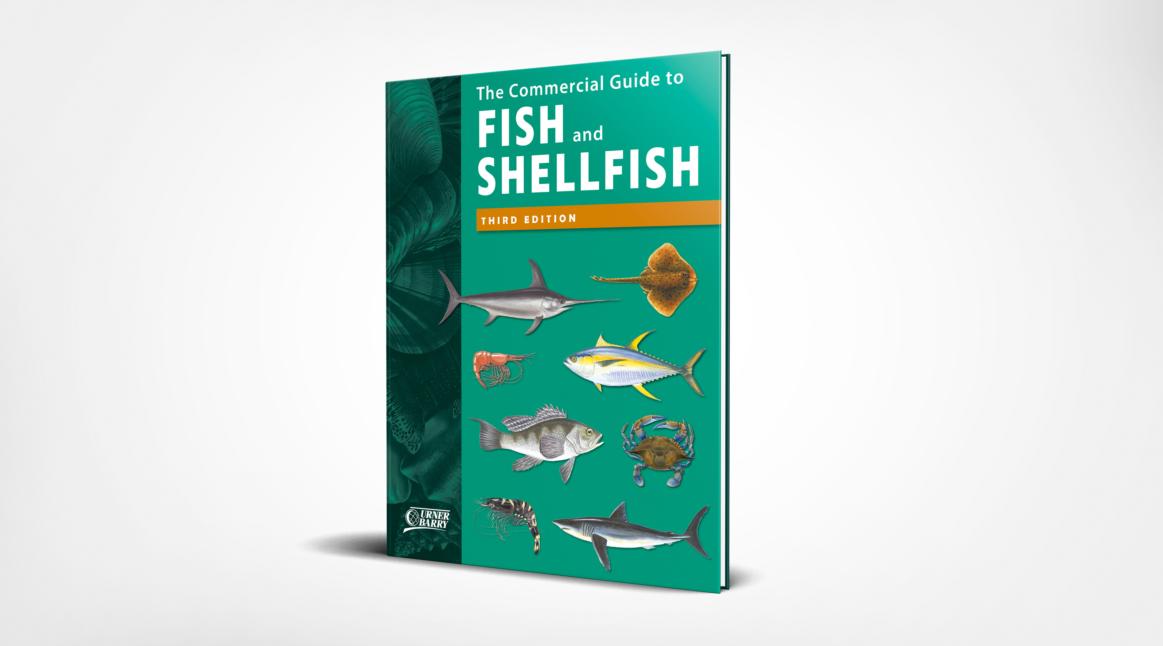 Shannon ehrola the commercial guide to fish and shellfish i was also responsible for illustrating new information that was not available within previous editions such as seasonality of a species and cleaning up sciox Gallery