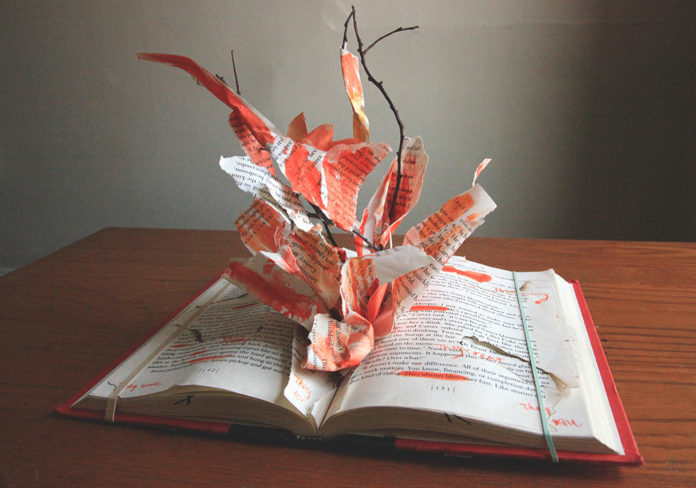 emily feng bookmaking